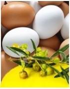 Conservas, Oliva Virgen Extra y huevos ecológicos DEPROXIMIDAD