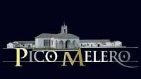 Pico Melero